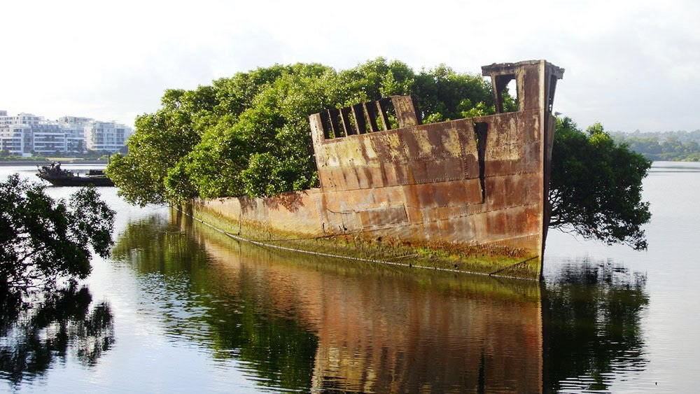 SS Ayrfield  is one of the many abandoned ships around the world and coastal shipwrecks