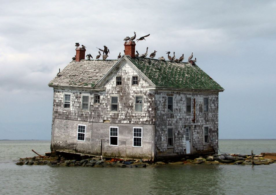 Holland Island Home with birds on the roof
